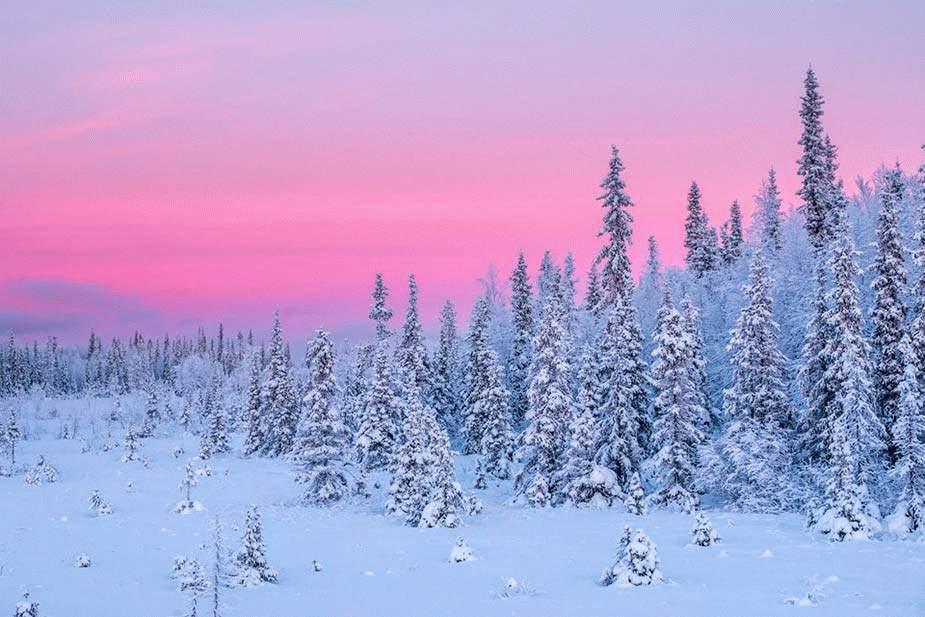 Фотографии пейзаж зимы